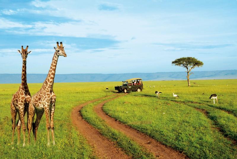 Картинки по запросу Туризм в Кении